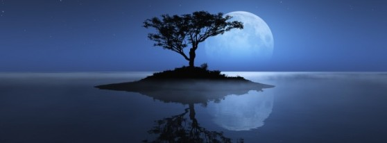 tree-sea-moon-reflection-island-stars-night-water-ocean-shadownature-315x851