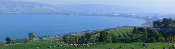 Kinnereth - Sea of Galilee (Panorama)