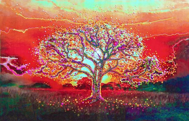 amazingtree